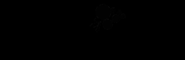 logos-baldovino