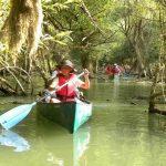 Escursione Canoa Aperitivo Serale
