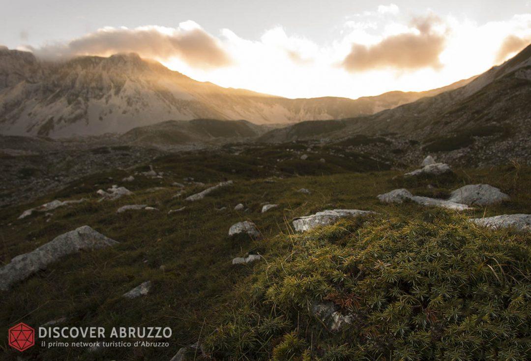 Abruzzo Trekking Escursioni Camminare Parchi Nazionali Natura Animali Montemeta