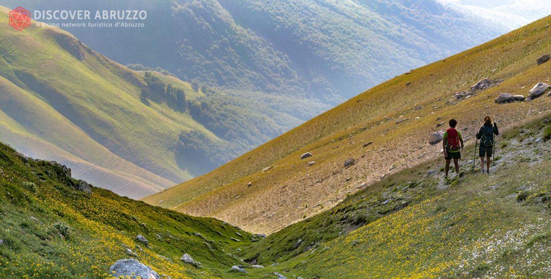 Abruzzo Trekking Escursioni Camminare Parchi Nazionali Natura Animali Valledelchiarino