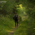 Abruzzo Trekking Escursioni Natura Fauna Orso Lupo Bambini Famiglie Fotografia 6