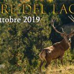 Copertina Evento Fb Il Re Del Lago