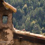 Zipline Majella Pacentro Volo Adrenalina (5)